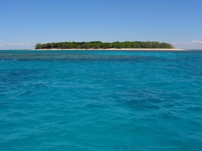 normal_27_1_Lady_Musgrave_Island%20%281%29.jpg
